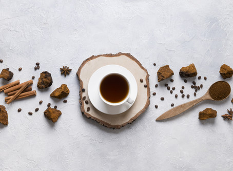 Not into harvesting Chaga Mushrooms? Here's how to buy a quality product.