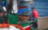 Favignana - Pescatore.jpg