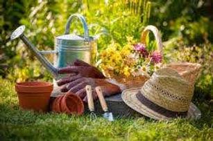 photo site jardin.jpg