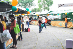 feira ibirapuera