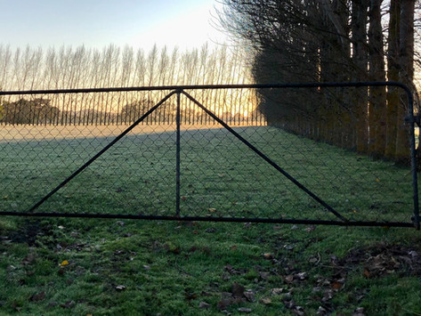 The Good Life: Open Gate-gate
