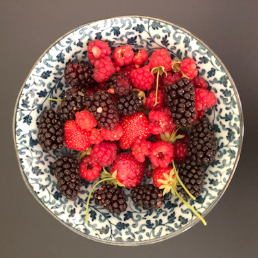 From the garden.