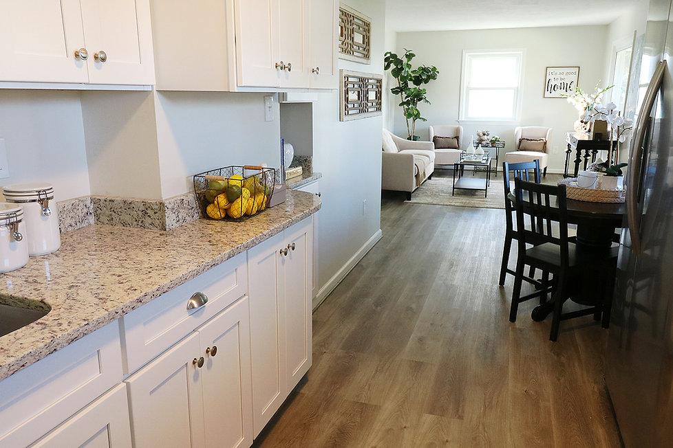kitchen_into_living_room.jpg