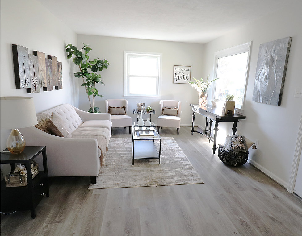 living_room_straight_on.jpg