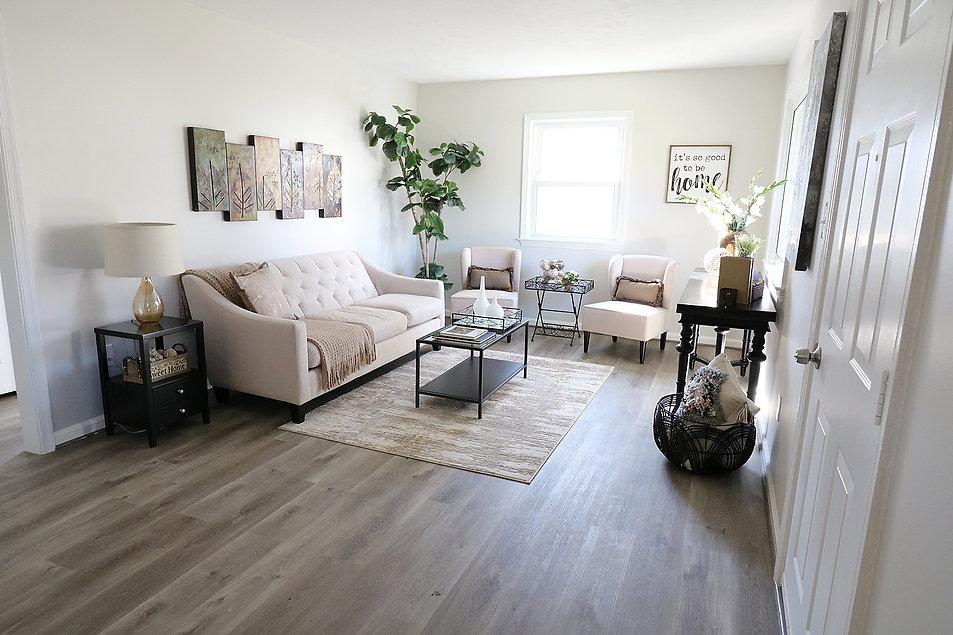 living_room_overal.jpg