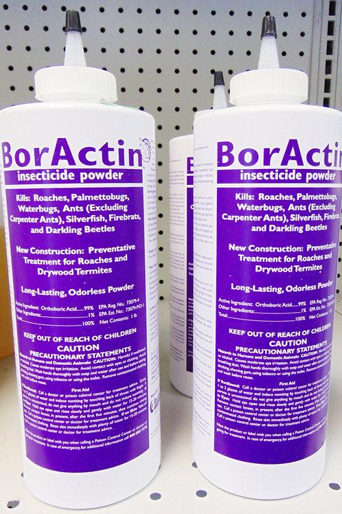 BorActin