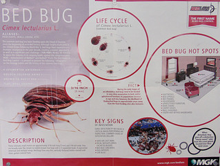 Do you have Bed Bugs?