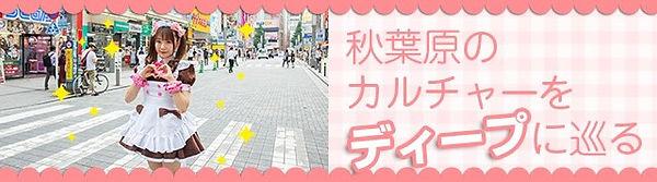 S__12886029.jpg