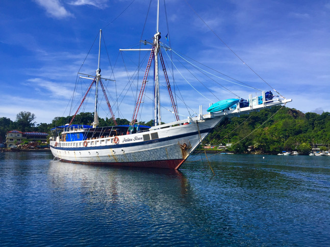 Expedition to the SW Islands of  Palau