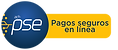 PSE (1).png