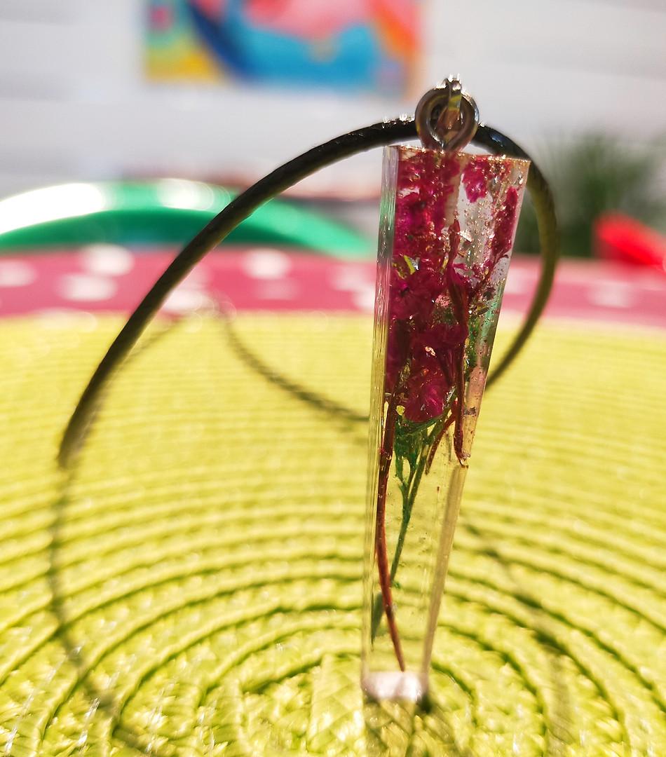 Fleurs fushia