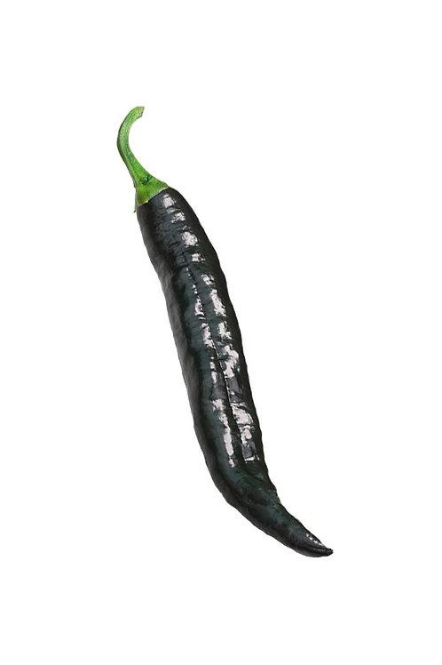 Chili chilaca