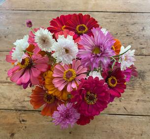 Nature's Abundance - Baton Rouge Flower Farm