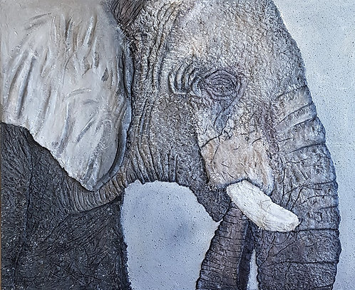 Etosha Elephant 80x100