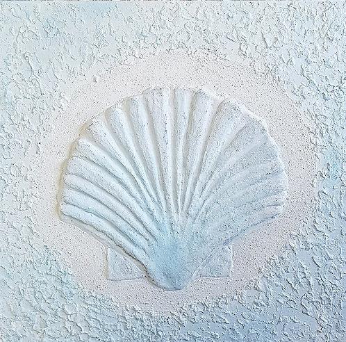 Scallop shell  61x61