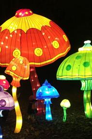 Magic-Lantern-Festival_7-1.jpg