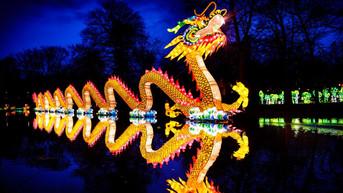 NYS_ChineseLantern_dragon_1920x1080-1024x576.jpg