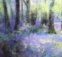 41(P&A)Rhona Rowley image1.jpeg