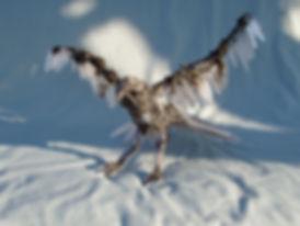 1O Bird 33 cm x 23 cm.jpg