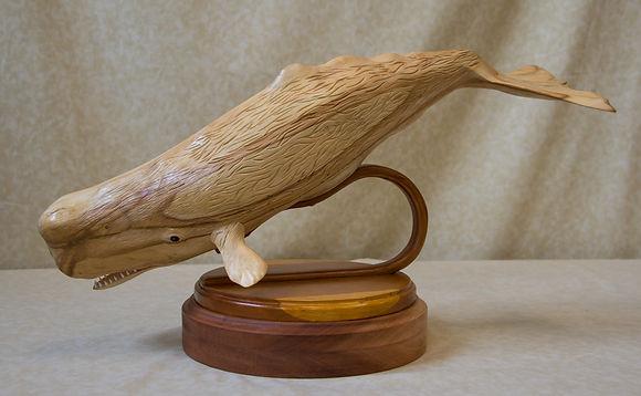 Sperm Whale by John Early Open.jpg