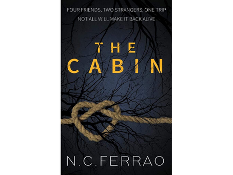 Book Review #156: The Cabin by N C Ferrao