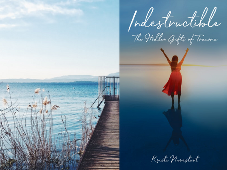Book Review #29 : Indestructible by Krista Nerestant