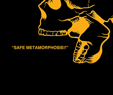 """Safe Metamorphosis!!!"" Poetry Book"