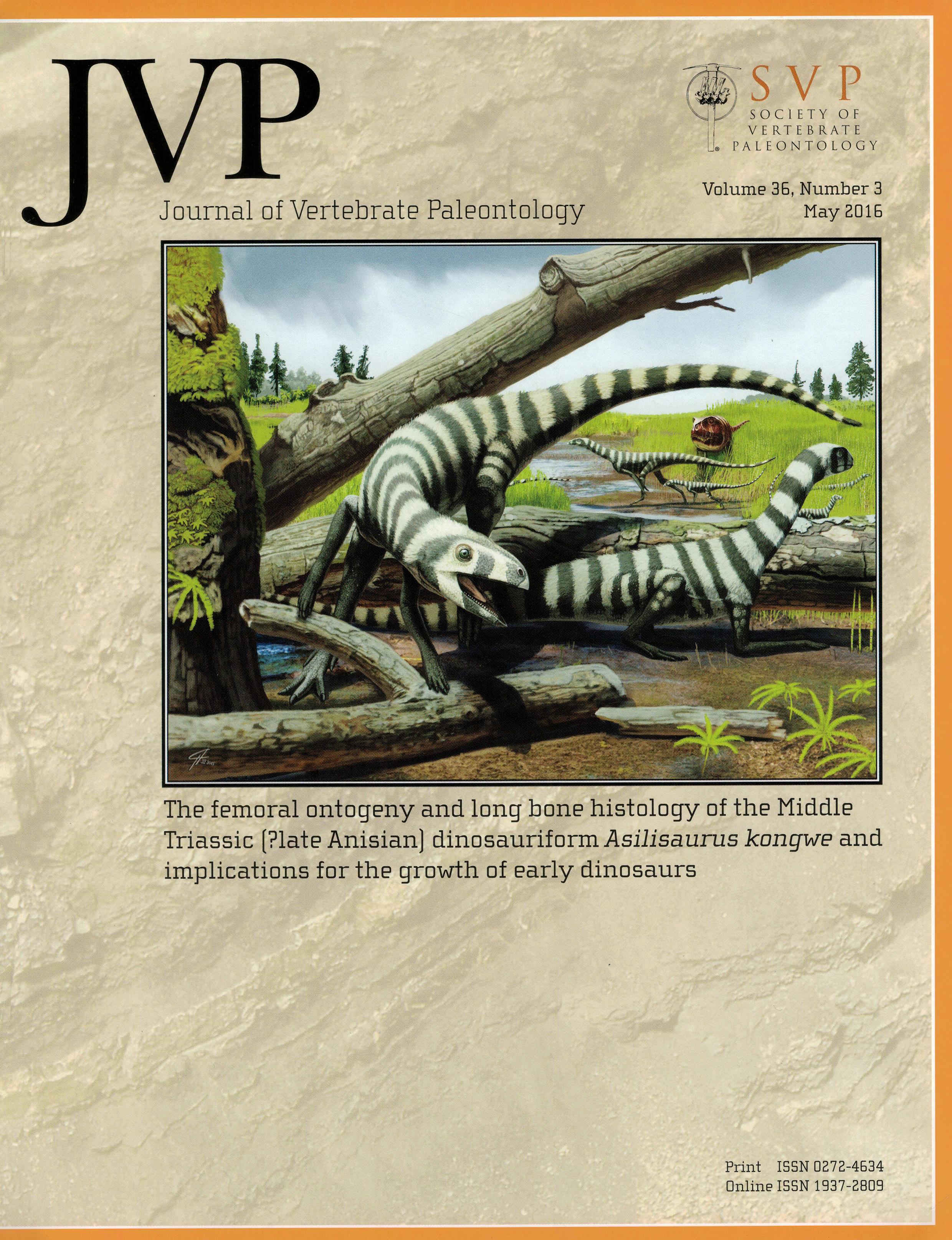 JVP Asilisaurus cover_300dpi