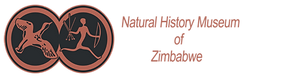 cropped-museum-logo-1.png