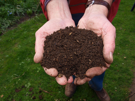 Your Go-To Guide for Composting At Home