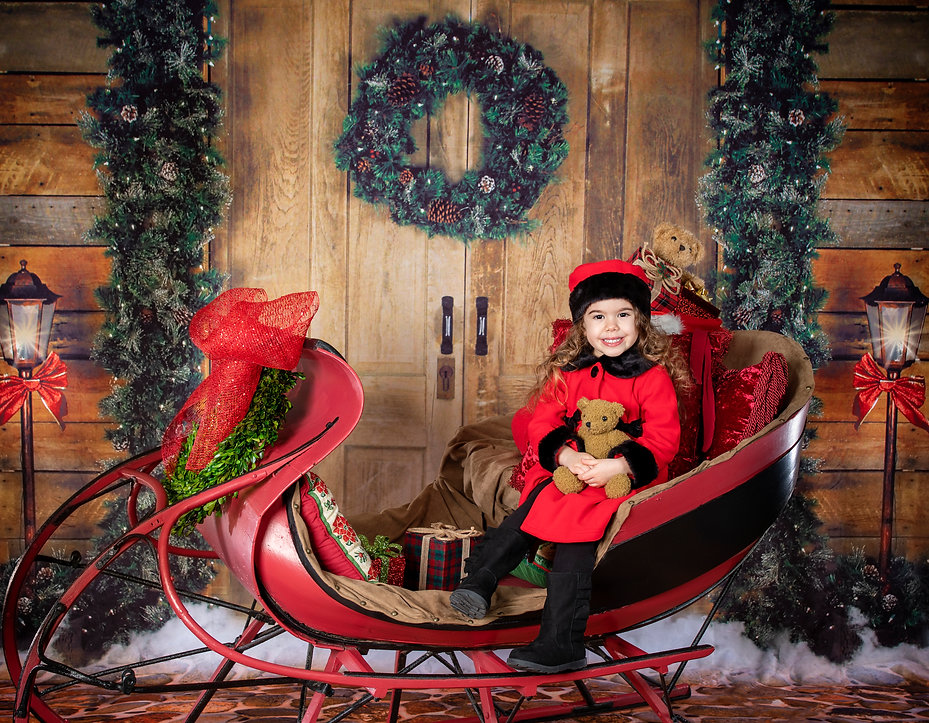 One Horse Open Sleigh Holiday Portrait L