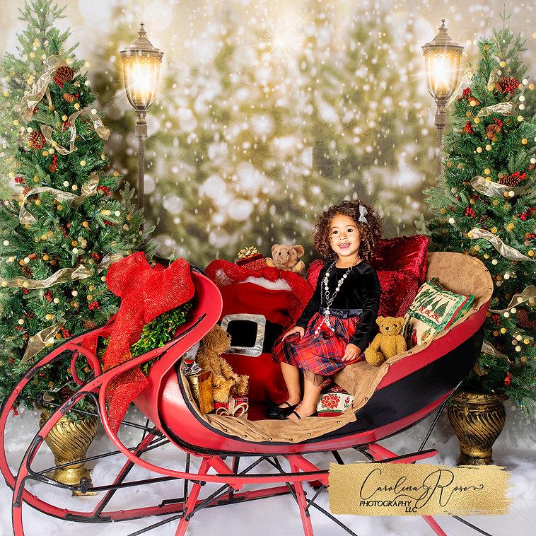 Holiday Portrait Girl Carolina Rose Phot