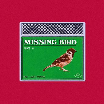 Missing bird.jpg
