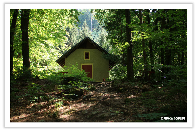 ביקתה ביער
