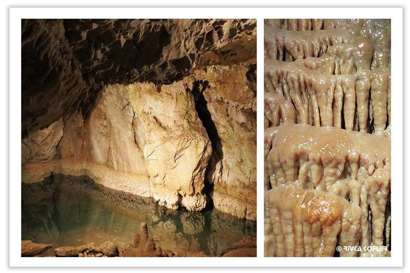 בריכה ונטיפים במערת החופש