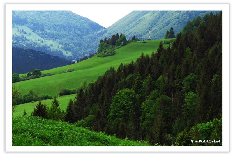 הרים בצבעי ירוק שונים