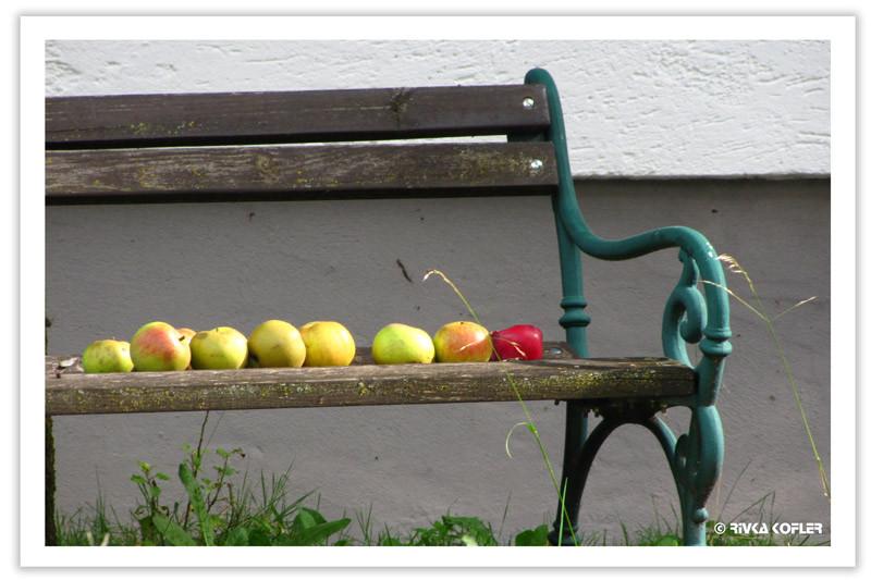 תפוחים על ספסל