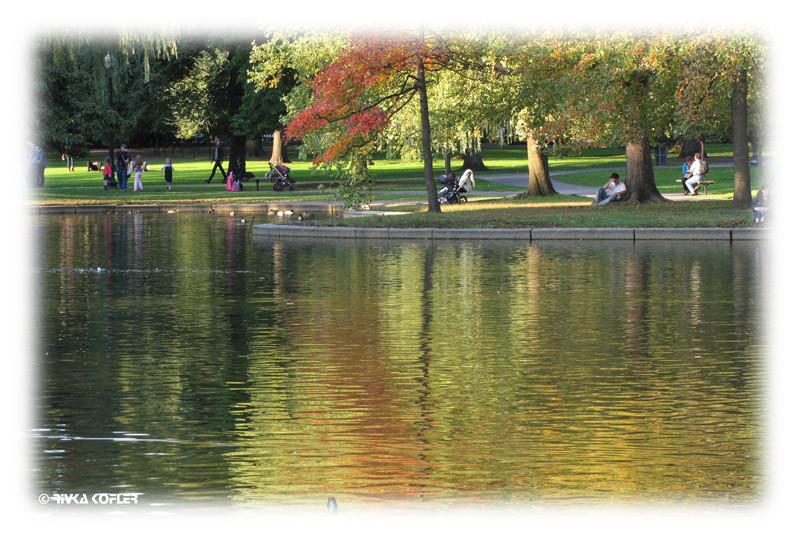 הפארק בבוסטון בשעת שקיעה