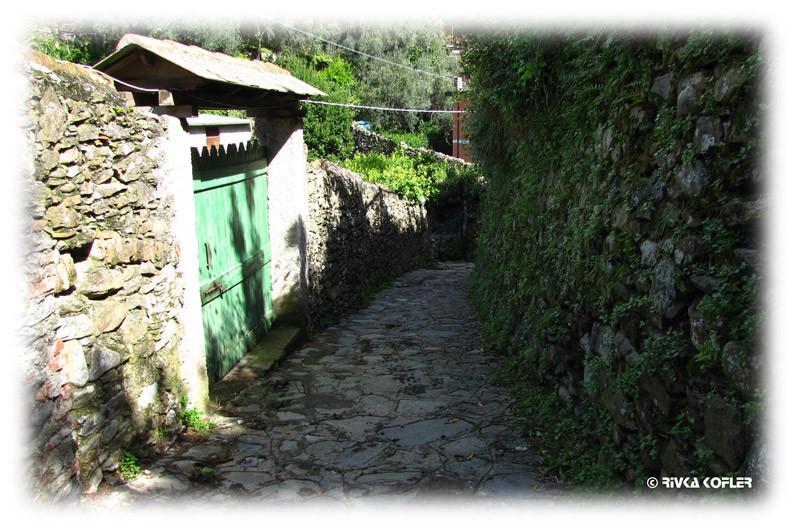 רחוב צר במונטרוסו