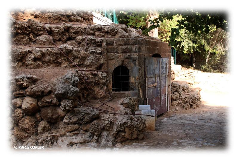 כנראה דלת למנהרה המובילה לצד השני של הגן