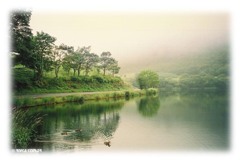 ערפל על הנהר