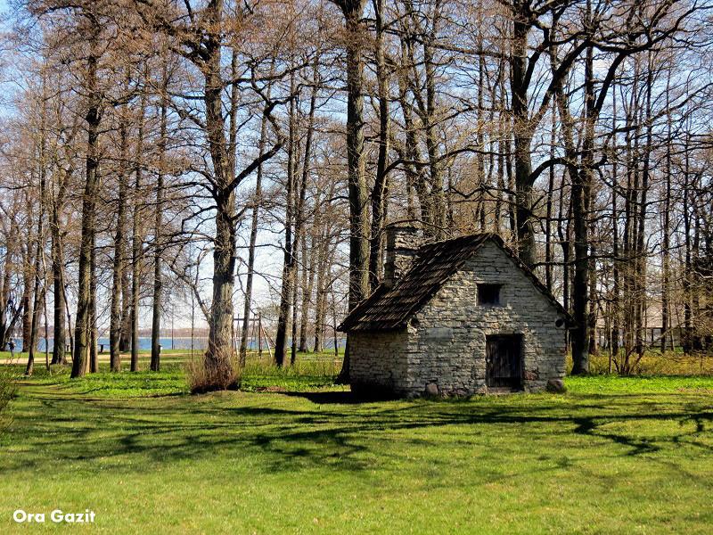 """בית ביער"""", צילום: אורה גזית"""""""