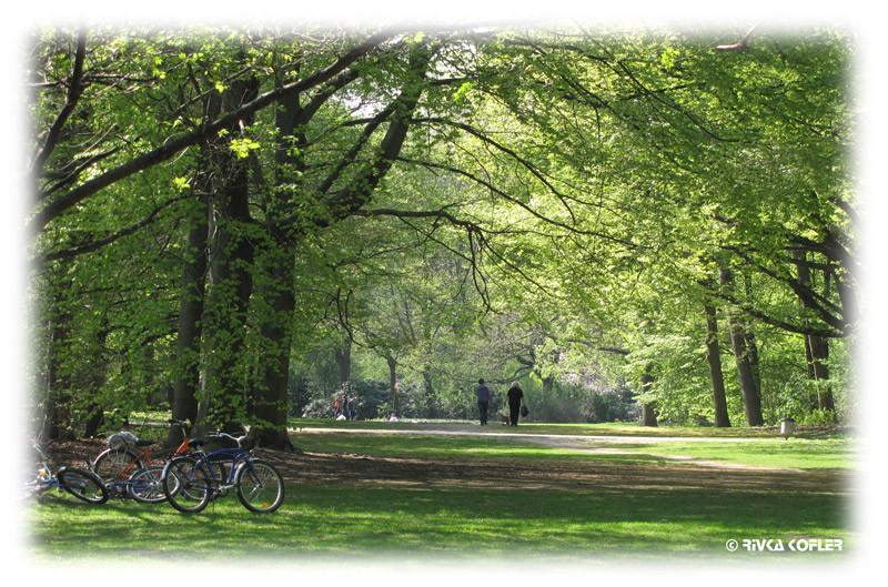 פארק, ברלין