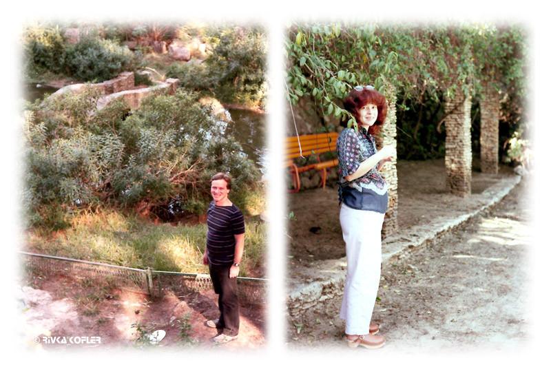 גן אברהם בתמונות הישנות