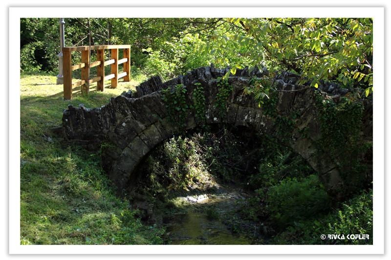 הגשר הקטן ביותר
