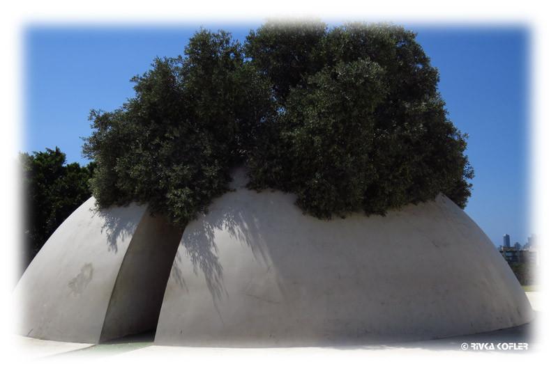 עץ ומבנה עגול