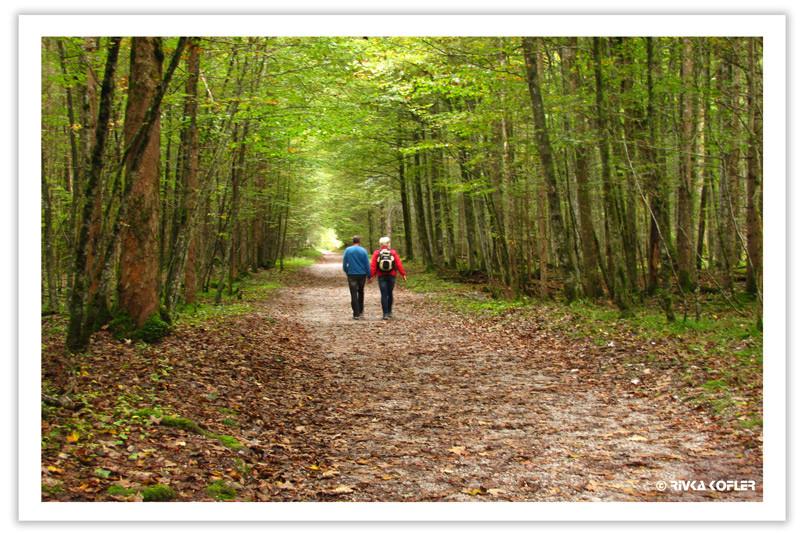 זוג מטייל ביער
