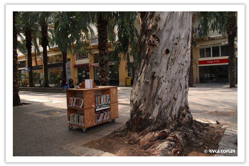 ספריה ברחוב, גזע עץ