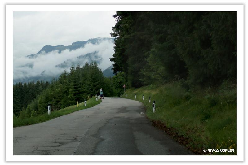 כביש כפרי, הולכת רגל, יער