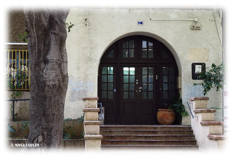 דלת מקומרת, עץ עתיק